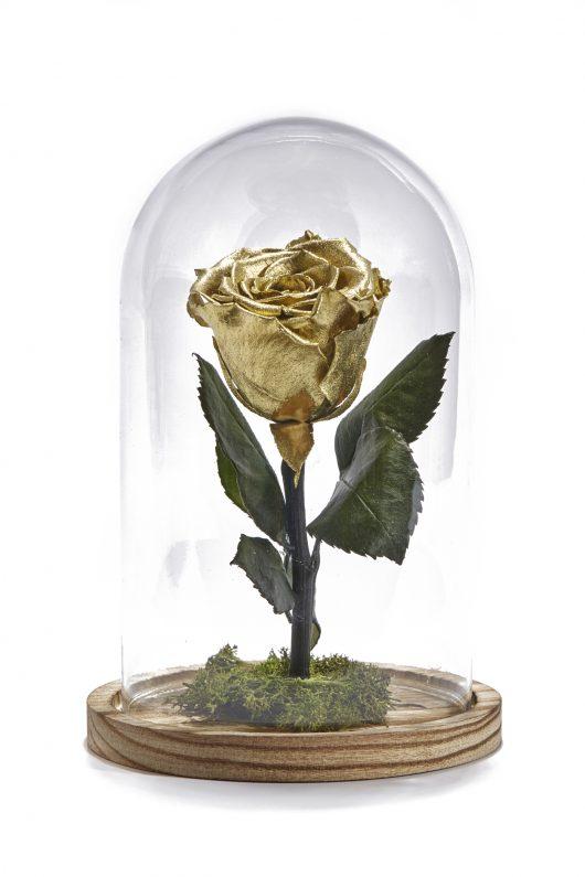 Forever Rose Χρυσό